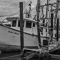 Shrimp Boat Dreaming by Dale Powell