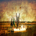 Shrimp Boat In Charleston by Susanne Van Hulst