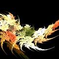 Shrimp by Kim Sy Ok