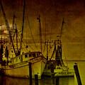 Shrimpboats In Apalachicola  by Susanne Van Hulst