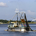 Shrimper With Birds On Wire by John Rowe
