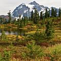 Shuksan Autumn by Mike Reid