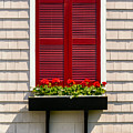 Shutter And Flowers by Jerry Fornarotto