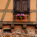 Shutters And Window Box In Kaysersberg by Greg Matchick