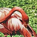 Shy Flamingo by Alice Gipson