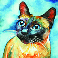 Siamese Cat by Christy  Freeman