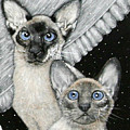 Siamese Cats by Angie Cockle
