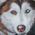 Siberian Husky Red by Lee Ann Shepard