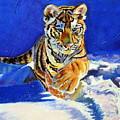 Siberian Tiger Cub by Christine King