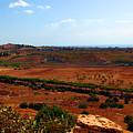 Sicily Landscape by Madeline Ellis