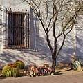 Side Area, San Xavier Del Bac by Eduardo Palazuelos Romo