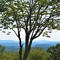 Sideling Hill Lookout  by Lisa Kleiner