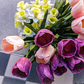Sidewalk Flowers by Robert Meyerson