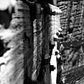 Sideways Glance by Cathi Abbiss Crane