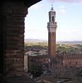 Siena by Enrico Ripamonti