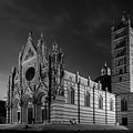 Siena Italy Cathedral Bw by Joan Carroll