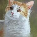Sienna by Joan Swanson