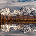 Sierra Reflections 2 by Cat Connor