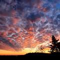 Sierra Skygasm Wide Angle by Sean Sarsfield