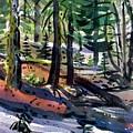 Sierra Snowdrifts by Donald Maier