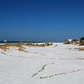 Siesta Key Beach by Gary Wonning