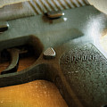 Sig Sauer P-250 by Sherman Perry