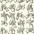 Sign Language Alphabet by English School