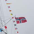 Signal Flags by Alex Hiemstra