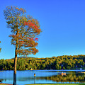 Signs Of Autumn On Old Forge Pond by David Patterson
