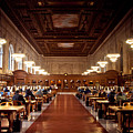 Silence In The Library by Heidi Reyher