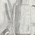 Silent Frog by Deborah Harsh