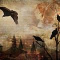 Silent Watchers by Laura Lipke