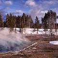 Silex Spring Yellowstone National Park by Thomas R Fletcher