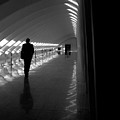 Silhouette In The Hall by Thomas Pipia