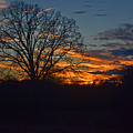 Silhouette Sunset 004 by George Bostian