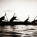 Silhouetted Paddlers by Bob Abraham - Printscapes