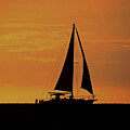 Silhouetted Sailboat by Pamela Walton