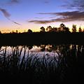 Silhouettes Of Sunrise by Kay Lovingood