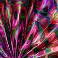 Silken Fan by Carolyn Staut