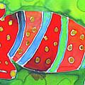 Silky Gecko by Kelly     ZumBerge