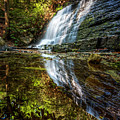 Silky Reflections by Debra and Dave Vanderlaan