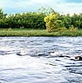 Silky Susquehanna River by Jim Turri
