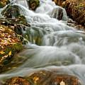 Silky Waterfall by Scott Read
