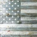 Silver American Flag by Tony Rubino