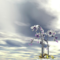 Silver And Gold Orchids by Nicholas Burningham
