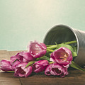 Silver Container With Fresh Tulips by John Trax