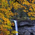Silver Falls State Park Oregon by Lee Santa