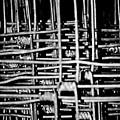 Silver Lining by Hannah Breidenbach