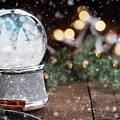 Silver Snow Globe With White Christmas Trees by Stephanie Frey