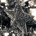 Silver Star by Toni Hopper
